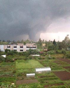 Violent 'wedge' tornado.