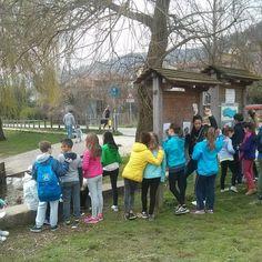 #educazione #scuola #scienza #natura Lago di Fimon