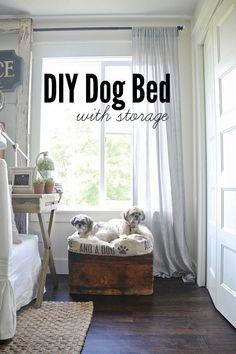 DIY super easy dog b