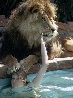 And these are the amazing photos documenting their time together. This is a teenage Griffith hanging out with Neil in the family swimming pool in Sherman Oaks, California. | These Photos Of A Teenage Melanie Griffith And Her Pet Lion In The 1970s Are Quite Something