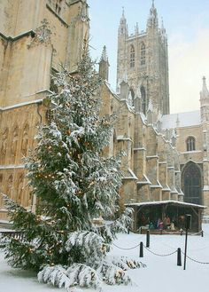 Christmas - Canterbury Cathedral, Canterbury, England by cristina Canterbury Cathedral, Canterbury England, Oh The Places You'll Go, Places To Visit, Winter Szenen, England And Scotland, Kent England, London England, Belle Villa