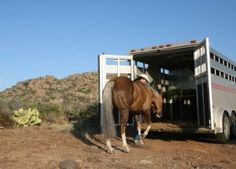 Travel safe with your horses! Follow these helpful tips to ensure your horse arrives safe and healthy at your next horse show: http://americashorsedaily.com/road-worthy-with-horses/