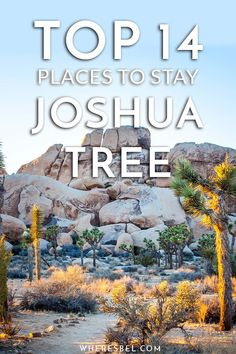 From campgrounds in and around Joshua Tree, to budget hotels, and luxury unique off-the-grid Airbnbs, here are the 14 of the best places to stay in near Joshua Tree National Park | California Travel / US National Park / Things to do in Joshua Tree / Where to Stay in Joshua Tree / Joshua Tree Campgrounds / Joshua Tree Rentals