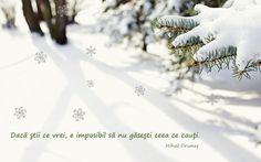 Va dorim un sfarsit de saptamana plin de cadouri dragi si multe zambete! Sa aveti parte de un Mos Nicolae darnic! #mosnicolae #6decembrie #weekend #misavan www.misavan.com