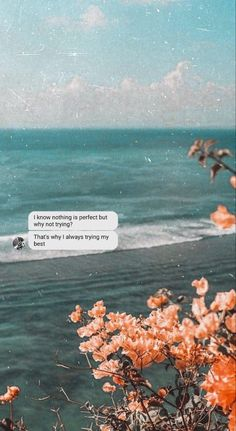 Message Wallpaper, Words Wallpaper, Islamic Wallpaper, Iphone Background Wallpaper, Positive Quotes Wallpaper, Quote Backgrounds, Tumblr Quotes Wallpaper, Lockscreen Iphone Quotes, Shotting Photo