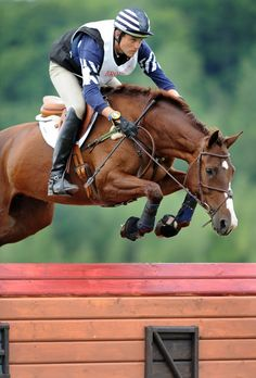 springside-eventing:  Now THAT is an automatic release. Damn Boyd.