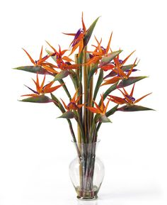 Birds Of Paradise, very popular in tropical arrangements