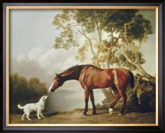 Bay Horse and White Dog  George Stubbs