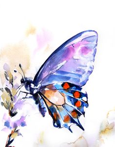 Butterfly Watercolor Painting Art Print Orange by CanotStopPrints