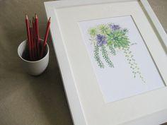 succulent watercolor.
