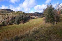 Agradable camino hacia La Puebla de Roda