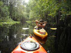 kayaking Hillsborough river