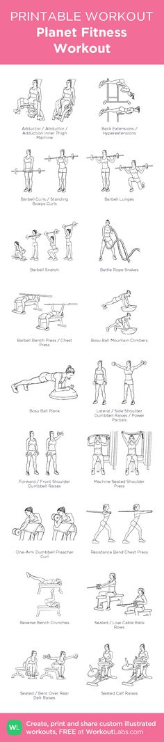 Planet Fitness Workout –illustrated exercise plan created at WorkoutLabs.com • Click for a printable PDF and to build your own #customworkout