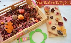Sensory Activities for Kids: Scented Sensory Bin from Blog Me Mom