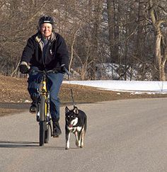 WikiHow's How to Ride a Bicycle with Your Dog: 6 Steps