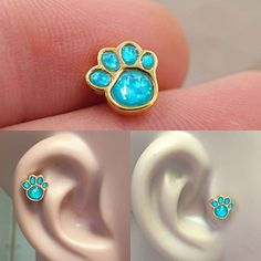 Animal paw print gold cartilage earring, or helix piercing with aqua opals. surgical steel plated with gold cartilage barbell piercing is and or long post which have a screw on Sapphire Earrings, Stone Earrings, Flower Earrings, Ear Peircings, Tragus Jewelry, Black And White Earrings, Cartilage Earrings, Cartilage Piercings, Body Jewelry