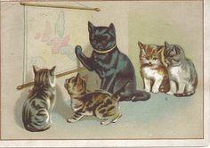 Google Image Result for http://4.bp.blogspot.com/_FEZc22SfAy4/SwSgit0b3EI/AAAAAAAABAo/FepRfUHkDLM/s1600/vintage_cat_postcard.jpg