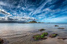Tapu Te Ranga Island in Island Bay, Wellington, New Zealand