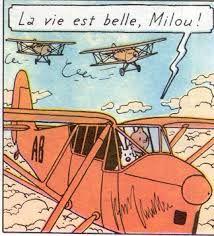 Life is beautiful - Tintin