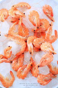Fett, Shrimp