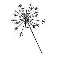 Check out Sparkler icon created by Denis Shumaylov
