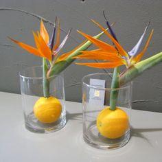 Stehtisch-Dekoration mit Strelizien und Orangen