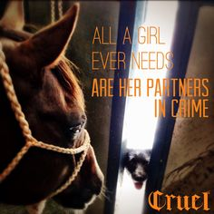 i just need my horses and cattle Rodeo Quotes, Equine Quotes, Equestrian Quotes, Racing Quotes, Horse Quotes, Dog Quotes, Animal Quotes, Cowgirl And Horse, My Horse