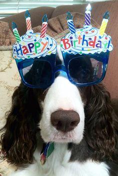 Ellie Beth wishing a Happy Birthday to YOU!