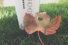the leaf with a heart cut out I Love Coffee, Coffee Break, Best Coffee, Fall Baby, I Fall, Fun Drinks, Yummy Drinks, Sweet September, Leaves Changing Color
