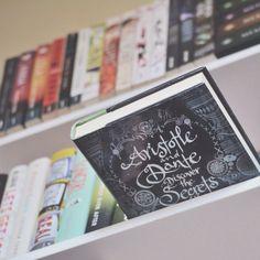 insidethebookreader: Aristotle and Dante Discover the Secrets of the Universe.
