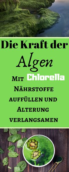 Did you know that Chlorella slows down the aging process and … - Healthy Lifestyle Tips Superfood, Lose Fat, Lose Weight, Healthy Lifestyle Tips, Aging Process, Bad Breath, Spirulina, Diet And Nutrition, Healthy Weight Loss