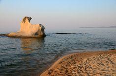 Athos, Halkidiki, Greece Halkidiki Greece, Polar Bear, My Photos, Places, Animals, Animales, Animaux, Animal, Animais