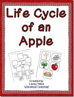 Freebie! Life cycle of an apple! To go with Johnny Appleseed Sonlight Core A