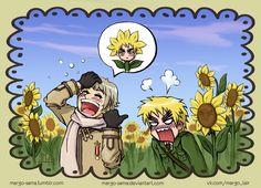 you look like a sunflower, England~ its kill or be killed