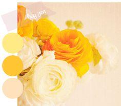 yellow colour palette Colour Yellow, Mellow Yellow, Hues Corporation, Color Me Beautiful, Colour Inspiration, Colour Board, Lollipops, Colour Palettes, Color Pallets