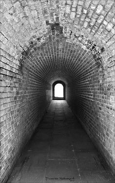 ˚Tunnel Vision - Fort Clinch State Park - Florida