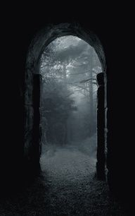 Forest gateway.