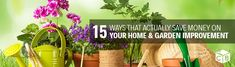 If you want to go for home and garden improvement, you need to ensure that you get it done right without spending too much. If you want some money-saving ideas for home & garden improvements, here is a list: Saving Ideas, Getting Things Done, Saving Money, Home And Garden, Plants, Get Stuff Done, Save My Money, Plant, Money Savers