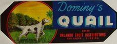 3.25X9 DOMINYS QUAIL, Vintage Orlando, Florida Citrus Crate Label