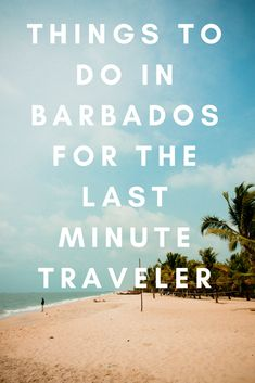 Barbados has many places to visit. For the last minute traveler, we have selected 12 things to do in Barbados for your holiday. Business Class, Business Travel, Business Entrepreneur, Business Marketing, Startup Business Plan Template, Last Minute Getaways, Stuff To Do, Things To Do, Startup Quotes