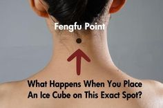 "What is a Feng Fu Point? The tendons on the back of your neck where the head and neck connect is called the Feng Fu point. An ancient Chinese remedy used in acupuncture Feng Fu or ""wind shelt…"