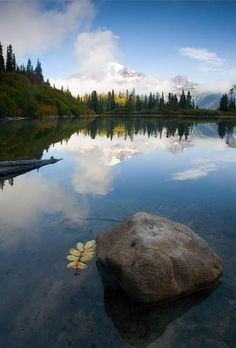 Majesty Hidden by Mike Dawson....I love the details he kept...mountains, trees, lake, reflection and the lone leaf floating! I need this for my wall!!