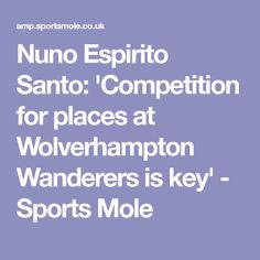 Nuno Espirito Santo: 'Competition for places at Wolverhampton Wanderers is key' - Sports Mole