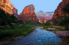 Sounds like a fun trip even if not on a honeymoon. Zion National Park, Utah -- From: A Southwest Honeymoon Road Trip — Sedona to Las Vegas Zion National Park, National Parks, Places To Travel, Places To See, Las Vegas, Zion Canyon, Bryce Canyon, To Infinity And Beyond, Road Trip Usa