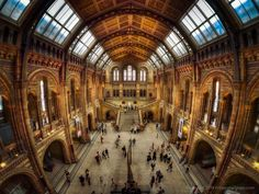 The Central Hall, NHM London