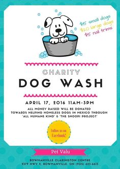 Tips and tricks for car washing, PAWS Dog Wash Fundraiser - All Humane Child & The Snoopi Project . Homeless Dogs, Helping The Homeless, Animal Shelter, Animal Rescue, Dog Wash, Trim Nails, Fundraising Events, Fundraising Activities, Raise Funds