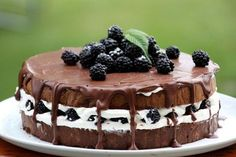 Čokoládovo smotanová torta s černicami - recept Vegan Keto, No Bake Cake, I Foods, Tiramisu, Cheesecake, Deserts, Food And Drink, Cupcakes, Yummy Food