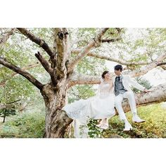【richvoh】さんのInstagramをピンしています。 《・ Tree climbing ・ 長野は白樺も多く。 木々がいきいきとしています。 ながのでは自然も新郎新婦ものびのびと、気持ち良い写真が撮れます。 ・ #richvoh #familyportrait #出張撮影 #wedding #weddingphotography #自然 #森  #前撮り #結婚式 #花嫁 #ロケーションフォト #japanesewedding #tokyo #プレ花嫁 #タキシード #結婚 #結婚準備 #花婿  #ドレス #nagano #Autumn #Autumnleaves #married #anniversary #photobyrich #ながのdeウエディング #treeclimbing #木登り》