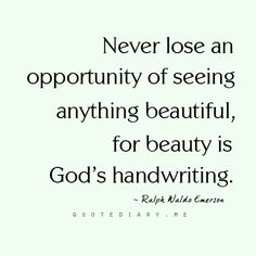 beauty in everything Art Quotes, Inspirational Quotes, Quirky Quotes, Spiritual Thoughts, Inspire Me, Awakening, Wise Words, Self, Wisdom