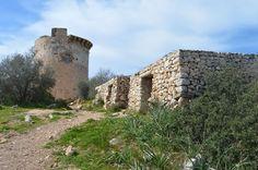 Mallorca con niños. Excursion Torre Cap Andritxol